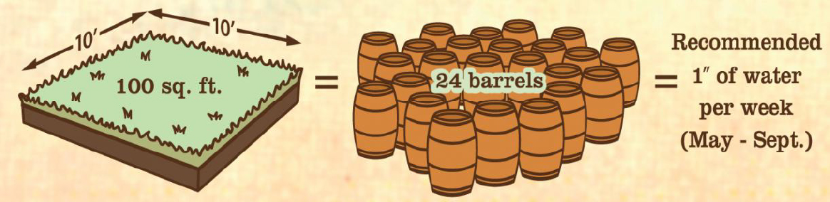 24 rain barrels are needed to water a 10' x 10' patch of grass